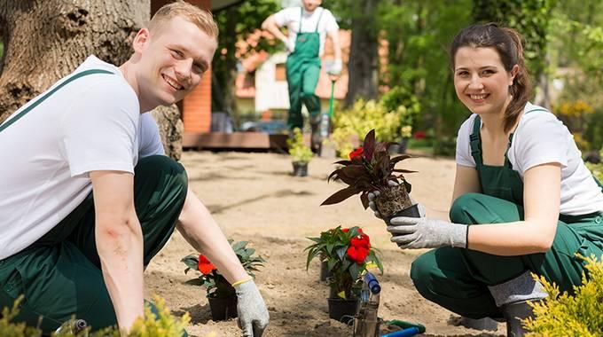 Azubis bepflanzen den Garten