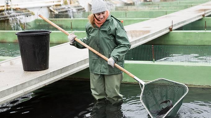 Mädchen fängt Fische